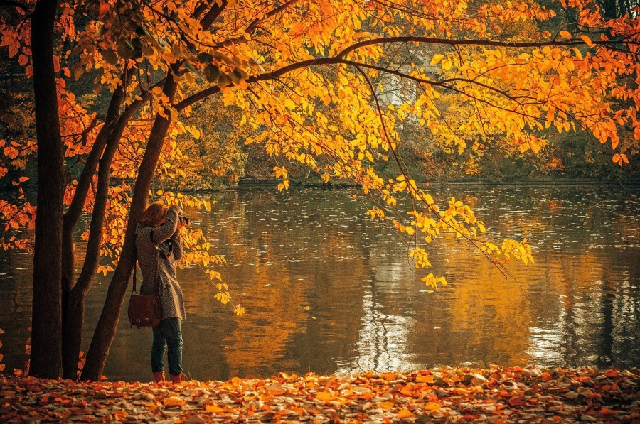 Photo of autumn leaves in front of lake