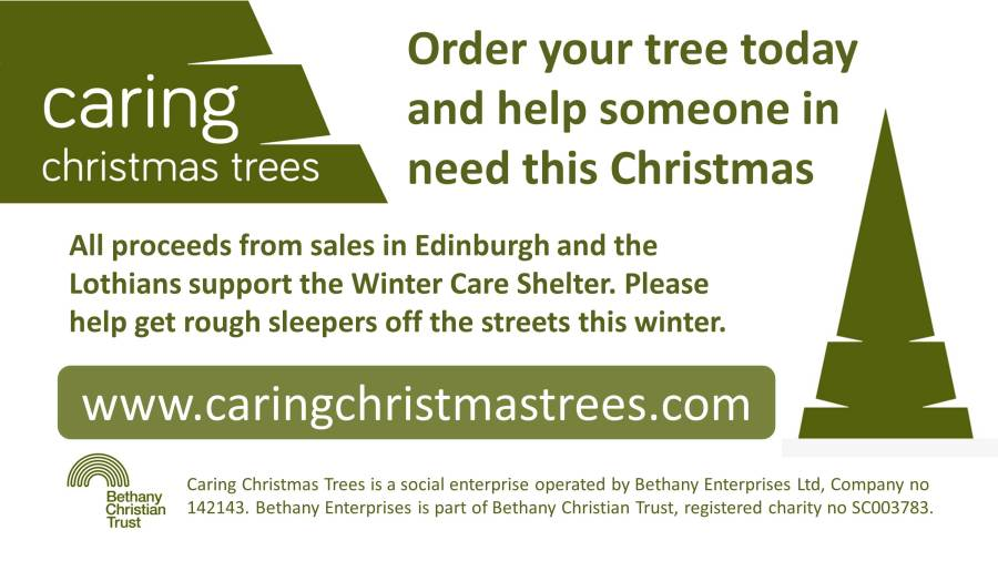 Caring Christmas Trees – help someone in need this Christmas - Caring Christmas Trees €� Help Someone In Need This Christmas